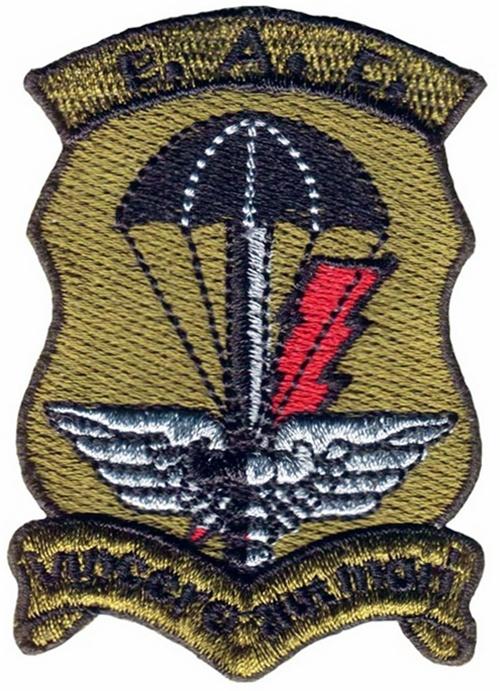 99 Escuadron de Apoyo de Comando - Actual GOE